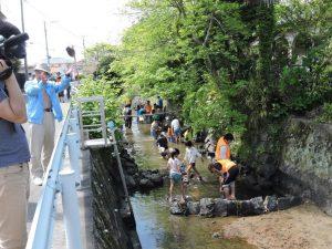 天祐寺川探検h28.4.16DSCN2005