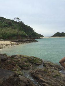 辰の島の海岸